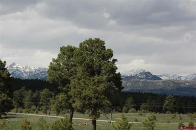 739 INDUSTRIAL CIR, Pagosa Springs, CO 81147 - Photo 2