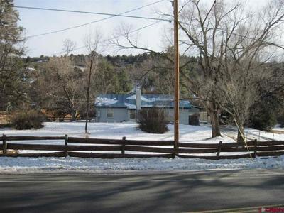 1650 FLORIDA RD, Durango, CO 81301 - Photo 1