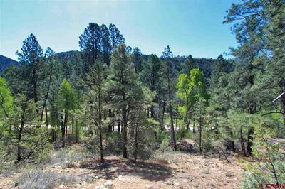 143 EL DIENTE DR, Durango, CO 81301 - Photo 1