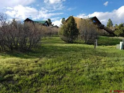 8 CABALLERO DR, Pagosa Springs, CO 81147 - Photo 1