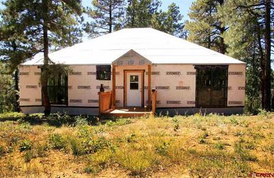 214 JUSTINS RD, Pagosa Springs, CO 81147 - Photo 2