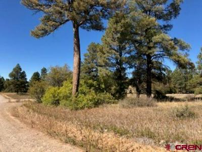 1223 TRAILS BLVD, Pagosa Springs, CO 81147 - Photo 1