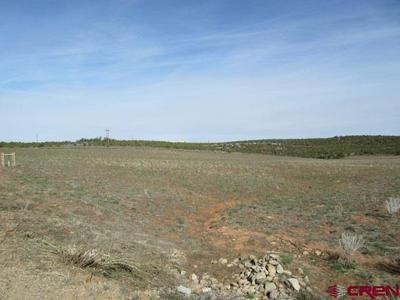 16990 ROAD 14, PLEASANT VIEW, CO 81331 - Photo 2