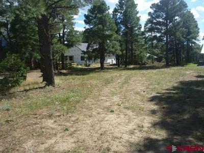 29 ROSEWOOD CT, Pagosa Springs, CO 81147 - Photo 1