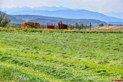 69216 VERNAL RD, Montrose, CO 81403 - Photo 1