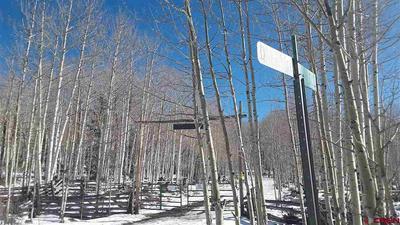 LOT 10 DEER TRAIL ROAD, Montrose, CO 81403 - Photo 2