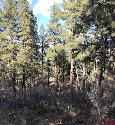 122 STARLIGHT PL, Pagosa Springs, CO 81147 - Photo 2