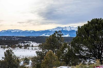 58 COUNTY ROAD 325, Westcliffe, CO 81252 - Photo 1