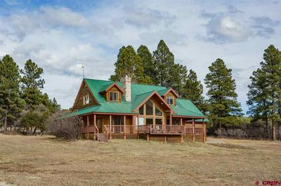 433 LONG HOLLOW CIR, Durango, CO 81301 - Photo 1