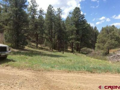 127 SUTTLES PLACE, Pagosa Springs, CO 81147 - Photo 2