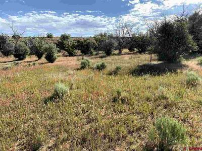 TBD ROAD AA, Pleasant View, CO 81331 - Photo 2