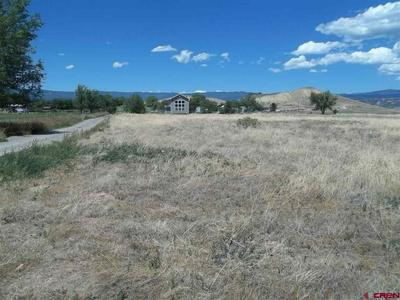 21868 MYERS RD, Eckert, CO 81418 - Photo 2