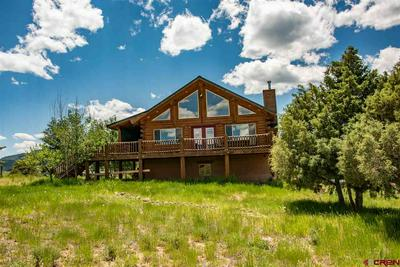 2439 COUNTY ROAD 359, PAGOSA SPRINGS, CO 81147 - Photo 1