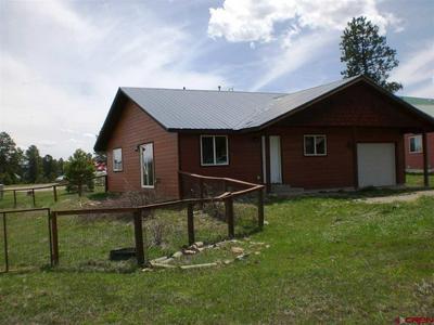 55 NAVAJO CT, Pagosa Springs, CO 81147 - Photo 1