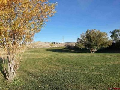 16097 6900 RD, Montrose, CO 81401 - Photo 2
