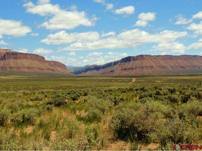 TBD ROAD 900, Bedrock, CO 81411 - Photo 2