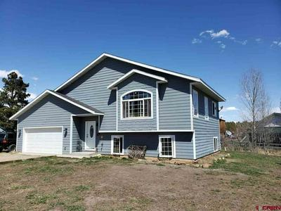 59 ROOSEVELT DR, PAGOSA SPRINGS, CO 81147 - Photo 1