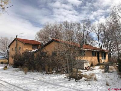 978 STATE HIGHWAY 17, Alamosa, CO 81101 - Photo 2