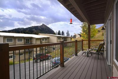 721 GOTHIC RD # P2, Mt. Crested Butte, CO 81224 - Photo 2
