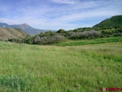 TBD STUCKER MESA ROAD, Hotchkiss, CO 81419 - Photo 1