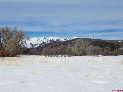 22500 HIGHWAY 140, HESPERUS, CO 81326 - Photo 1