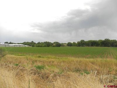 TBD H ROAD, Delta, CO 81416 - Photo 1