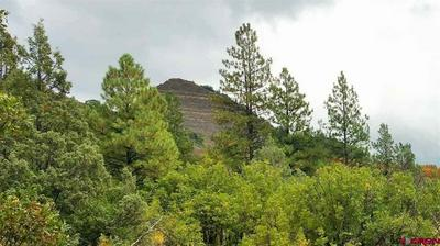 60 BLUE JAY PL, PAGOSA SPRINGS, CO 81147 - Photo 2