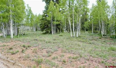 500 FOREST SERVICE ROAD 770, Pitkin, CO 81241 - Photo 1