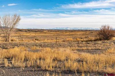LOT 7 PHEASANT RICH ROAD, Delta, CO 81416 - Photo 1