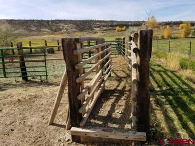 TBD HWY 550 SOUTH, Montrose, CO 81403 - Photo 2