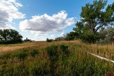 20750 HIGHWAY 491, LEWIS, CO 81327 - Photo 2