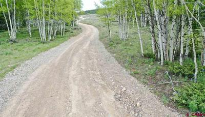 500 FOREST SERVICE ROAD 770, Pitkin, CO 81241 - Photo 2