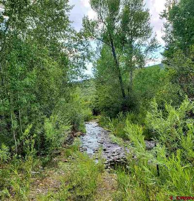 TBD ASPEN HILLS ROAD, Cedaredge, CO 81413 - Photo 1