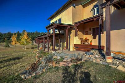 1120 HILLS CIR, Pagosa Springs, CO 81147 - Photo 2