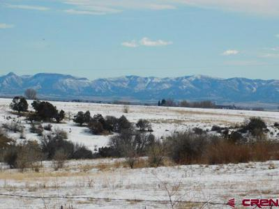 TBD ROAD 20, Lewis, CO 81327 - Photo 2