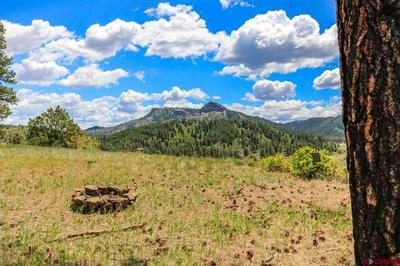 975, Pagosa Springs, CO 81147 - Photo 1
