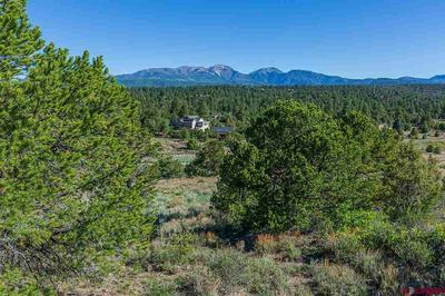 TBD WILDCAT TRAIL, Hesperus, CO 81326 - Photo 2
