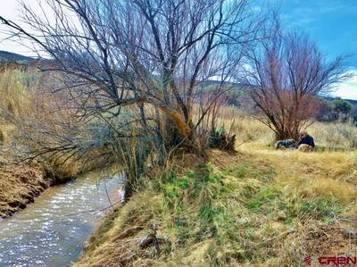 TBD ROAD 900, Bedrock, CO 81411 - Photo 1
