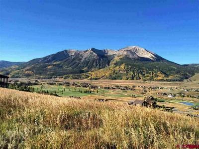 845 SKYLAND DR, Crested Butte, CO 81224 - Photo 1