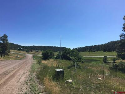 100 SWEETWATER DR, Pagosa Springs, CO 81147 - Photo 2