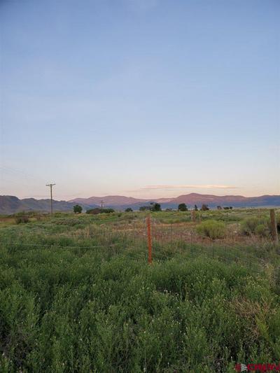 LOTS 4, Saguache, CO 81149 - Photo 2
