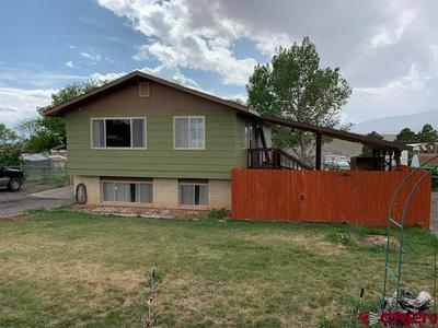 13083 HILLCREST RD, Eckert, CO 81418 - Photo 1