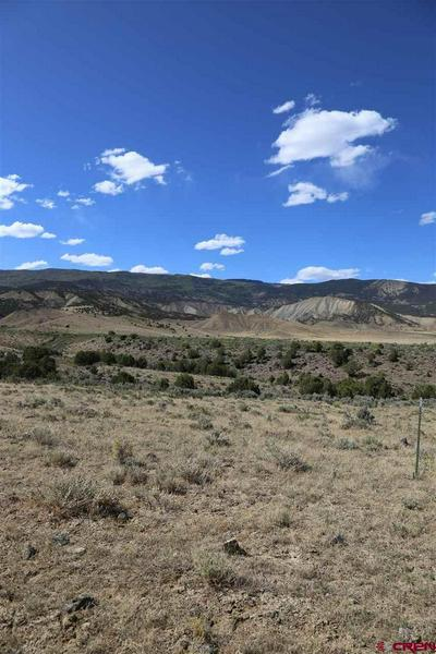 PARCEL 4 OAK CREEK ROAD, Eckert, CO 81418 - Photo 2