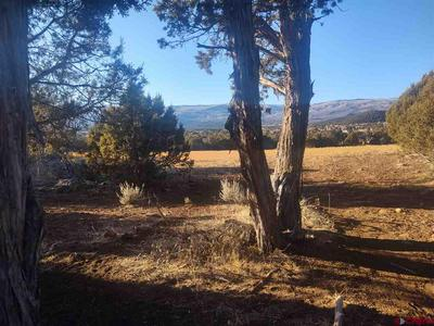 TBD 2375 ROAD, Cedaredge, CO 81413 - Photo 1
