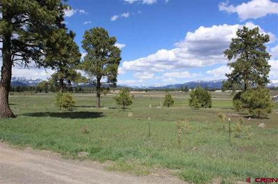 205 INDUSTRIAL CIR, Pagosa Springs, CO 81147 - Photo 2