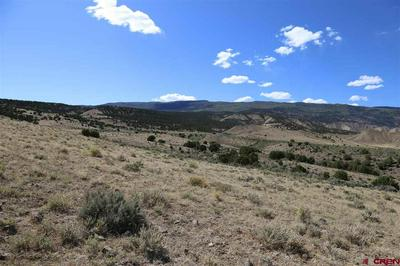 PARCEL 5 OAK CREEK ROAD, Eckert, CO 81418 - Photo 1