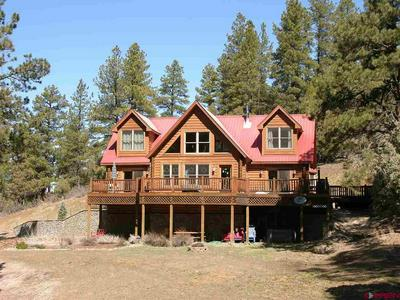 704 TWO BEAR RD, PAGOSA SPRINGS, CO 81147 - Photo 1