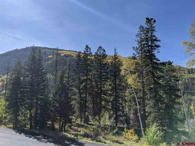 15 SULTAN DR, Durango, CO 81301 - Photo 2