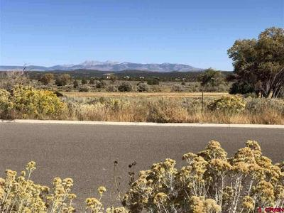 TBD GOLF COURSE LANE LOT #18, Cortez, CO 81321 - Photo 2