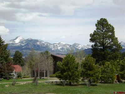 55 NAVAJO CT, Pagosa Springs, CO 81147 - Photo 2